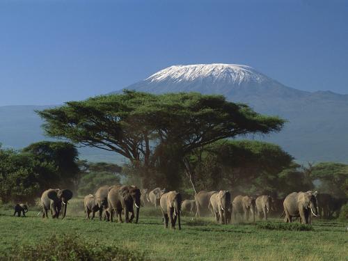Kilimanjaro i december.