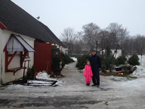Årets juletræ blev købt i Saunte. Det var lidt som at være med i Jul i Gammelby - på den fede måde. Foto: Lotte Lund