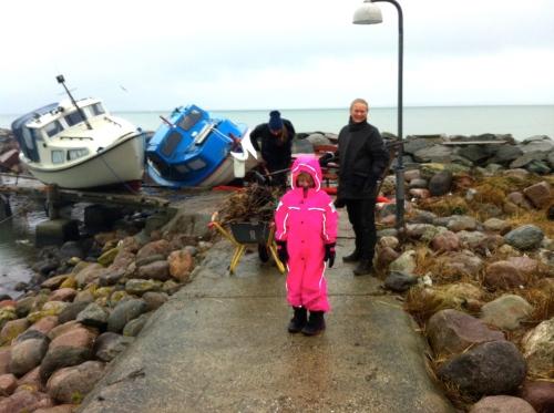 Bådene ligger stadig på molerne i Hornbæk Havn. De spærrer blandt andet for adgangen til vinterbadernes hus. Foto: Lotte Lund.