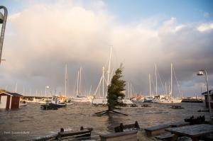 Temaet for Kulturnat 2014 er 'Himmel & Hav'. Det vil blandt andet komme til udtryk i et billedshow i Hornbæk Bådeklub om stormen Bodil og det, der fulgte. Foto: Susanne Buhl.